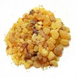 乳香 Frankincense 10ml